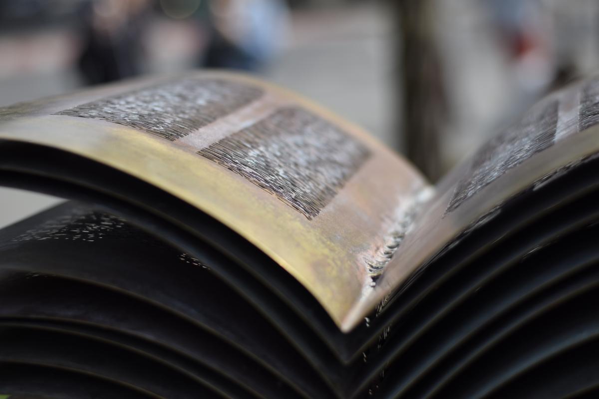 Cartea care te citește/ Revelația